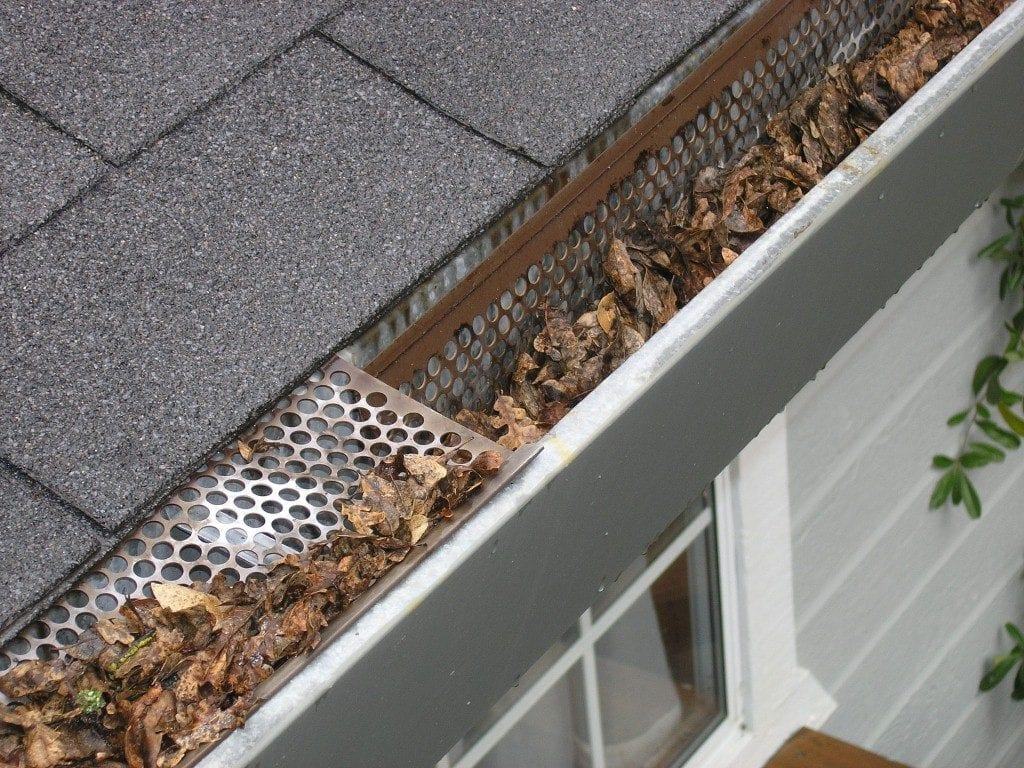 Remove Leaves - Roof care tips by Bay 101 Roofing